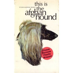 AFGAN HOUND, THIS IS THE