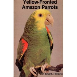 AMAZON PARROTS, YELLOW FONDED