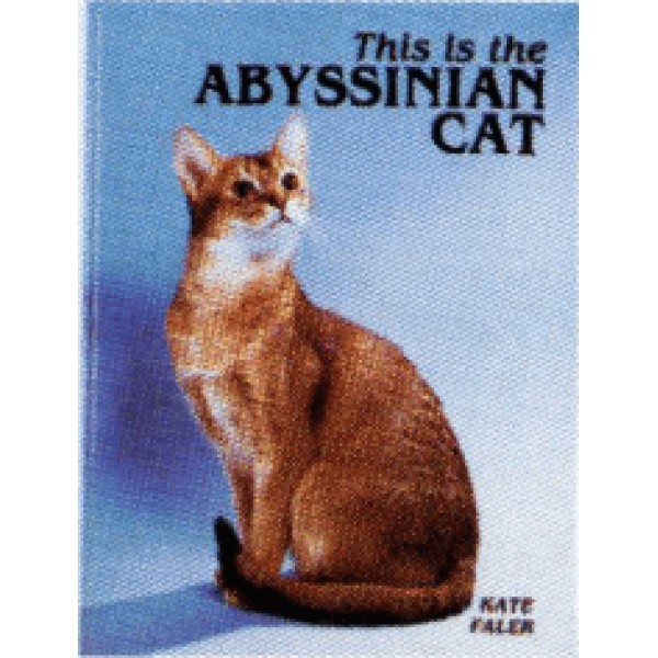 ABYSSIAN CAT, THIS IS THE
