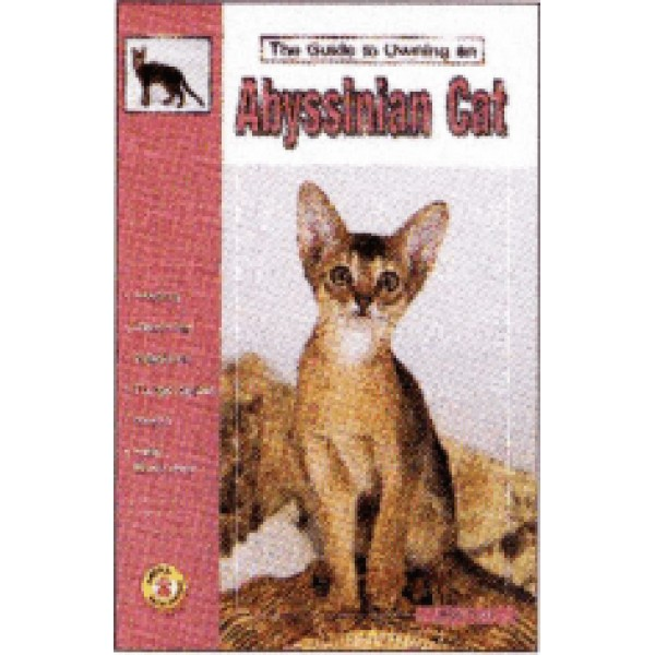 ABYSSINIAN CAT GUIDE TO OWNING