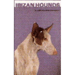 IBIZAN HOUNDS