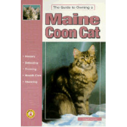 MAINE COON CAT GUIDE TO OWNING
