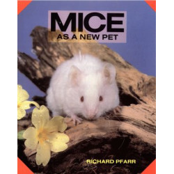 MICE AS A NEW PET