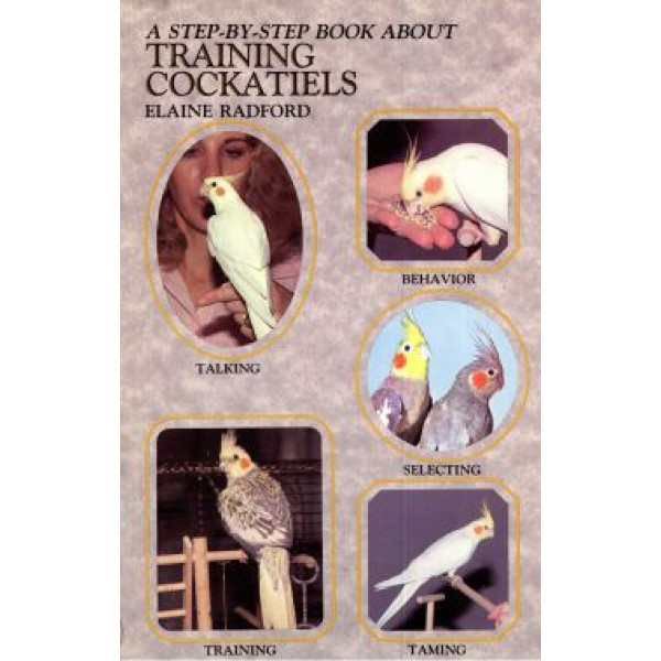 TRAINING COCKATIELS - STEP BY STEP